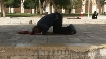 Muslim praying at the Temple Mount